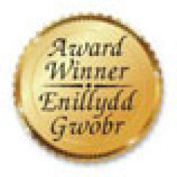 Bilingual Award